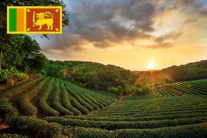 Währung und Zahlungsmittel auf Sri Lanka