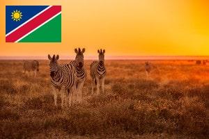 Währung und Zahlungsmittel in Namibia