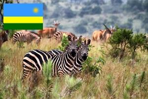 Gebührenfrei Geld abheben in Ruanda