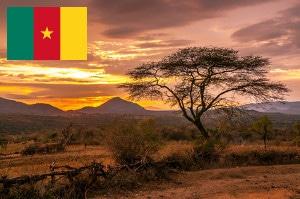 Gebührenfrei Geld abheben in Kamerun