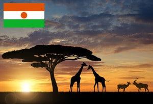 Gebührenfrei Geld abheben in Niger