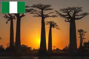 Gebührenfrei Geld abheben in Nigeria
