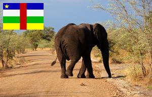 Gebührenfrei Geld abheben in der Zentralafrikanischen Republik