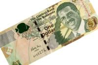 Übersicht Münzen und Banknoten der Währung Bahama-Dollar