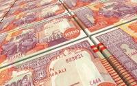 Übersicht Münzen und Banknoten der Währung Somalia-Schilling