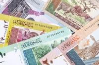 Übersicht Banknoten Sudan Pfund