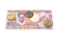 Übersicht Banknoten und Münzen Suriname Dollar
