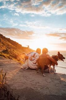 Bei der Auswahl des Reisezieles muss bei einer Reise mit Haustier besonders auf die Umgebung geachtet werden